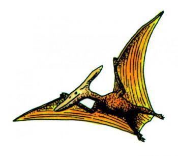 D716Pteranodon.jpg