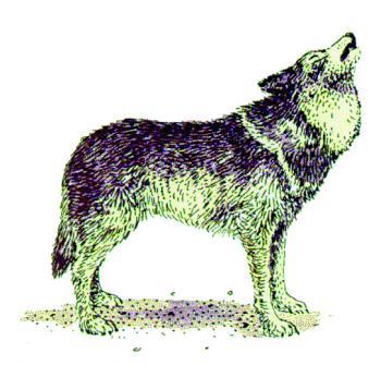 ES500Greywolf.jpg